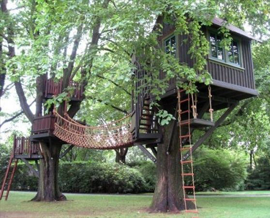 Tree House Building Tips And Plans Cad Pro