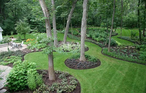 Popular Landscape Trends and Landscape Plans
